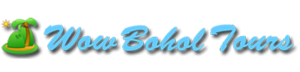 Wow Bohol Tours - Bohol Tour Package